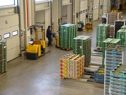 Logistiek staat in top 3 meest bekeken vacatures
