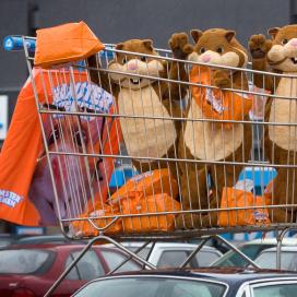 Van hamsterweken naar beverdagen: promotieplanning