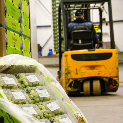 Origin Fruit Direct start met GS1 Palletlabel voor Europese Retail