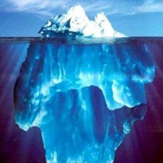 Hoe verloopt jouw weg naar de top?