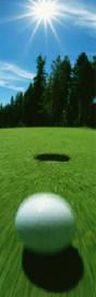 WMS-systeem van de golfbaan?