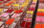Bloemenveiling decentraliseert sorteerproces
