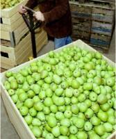 Werk in koelcel voor fruitopslag gevaarlijk