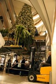 Heftruck bouwt mee aan super kerstboom