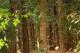 Attachment 001 logistiek image lognws107854i01 80x53