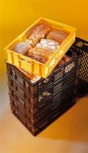 Broodkratten in kleur
