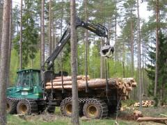 Start project duurzame houten verpakkingen
