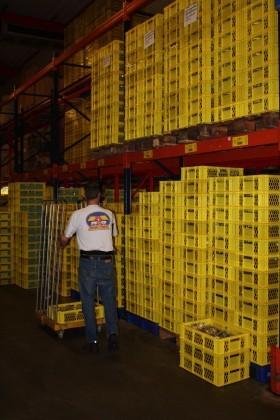 Attachment 004 logistiek image lognws109755i04 280x420