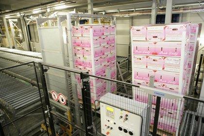 Attachment 009 logistiek image logref100433i09