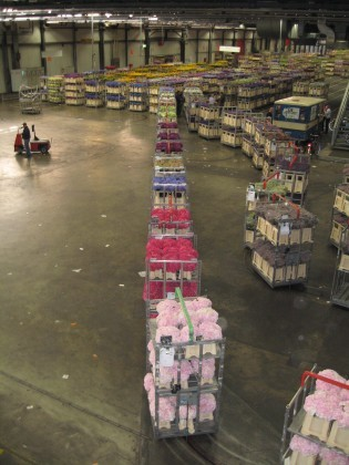 Attachment 012 logistiek image logdos113348i12 315x420