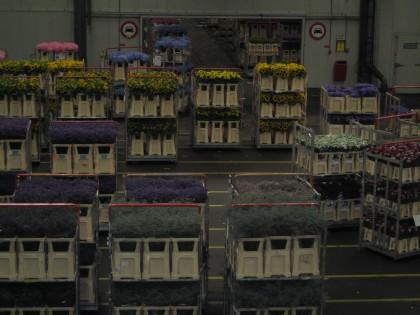 Attachment 013 logistiek image logdos113348i13