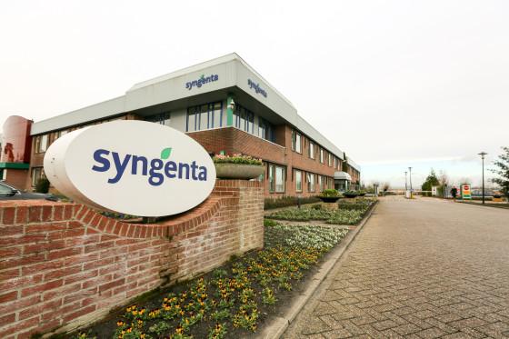 Syngenta t2s 33 560x373