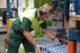 Heineken verbetert ergonomie en productiviteit met voice