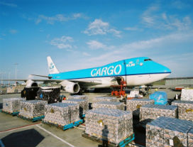 KLM Cargo: Slimmer samenwerken leidt tot efficiënter transport Schiphol