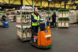 Software storingen ontregelen logistiek FloraHolland