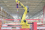 DHL Beringe verhoogt productiviteit met robot pickingcell