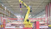 'Deze pickrobot biedt een oplossing voor het personeeltekort' (video)